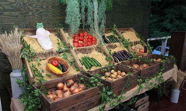 管理棟元野菜